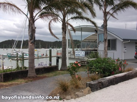 Palm trees at Opua Marina Crusing Club